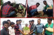 கோபியில் நாம் தமிழர் கட்சி சார்பாக மரக்கன்றுகள் நடப்பட்டது