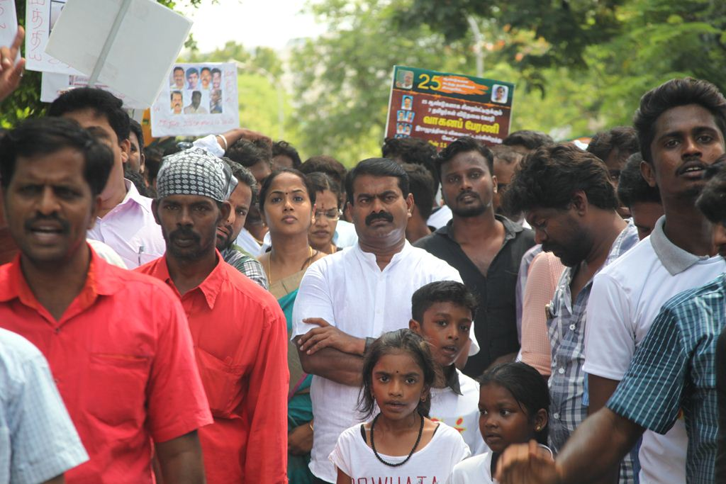 release-7-innocents-rally-seemanIMG_2677