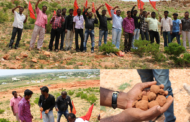மந்தித்தோப்பு மலை பகுதியில் விதை பந்து தூவும் நிகழ்வு - கோவில்பட்டி
