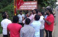 நாம் தமிழர் கட்சி கொடியேற்ற நிகழ்வு | 12-11-2017