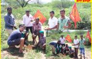 பலகோடி பனை திட்டம்- நாம் தமிழர் கட்சி-ஆத்தூர் சட்டமன்றத்தொகுதி