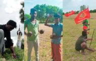 பனை விதை நடும் திரு விழா-உளுந்தூர்பேட்டை சட்டமன்றத் தொகுதி