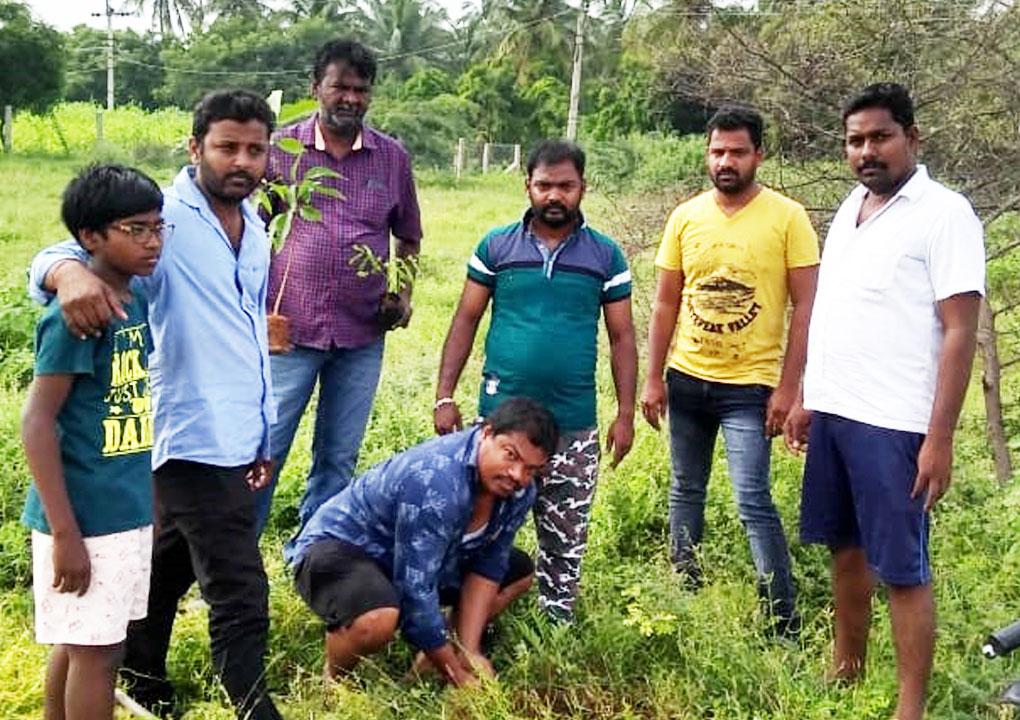 மரக்கன்று நடும் விழா-பல்லடம் சட்டமன்றத் தொகுதி