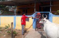 கொரோனா நோய் தடுப்பு நடவடிக்கையாக கபசுர குடிநீர் வழங்குதல் திருவெறும்பூர் தொகுதி